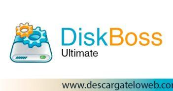 DiskBoss Ultimate / Enterprise 11.8.16 Full